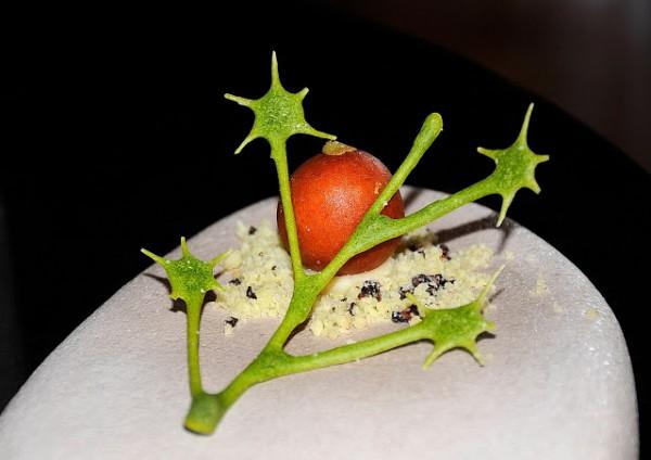 La Credenza Giovanni Grasso : Lo show room di alta cucina mauro olivieri